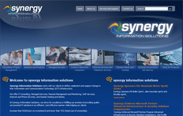 Synergy Information Solutions